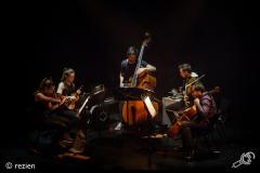 Wooden-Elephant-Cross-Linx-Eindhoven-Muziekgebouw-03-03-2018-©rezien (6 of 10)