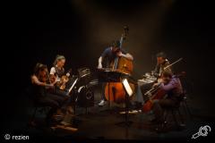 Wooden-Elephant-Cross-Linx-Eindhoven-Muziekgebouw-03-03-2018-©rezien (7 of 10)