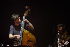 Wooden-Elephant-Cross-Linx-Eindhoven-Muziekgebouw-03-03-2018-©rezien (9 of 10)