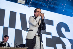 The-hives-dauwpop-26052018-denise-amber_001